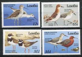 Lesotho , michel 787/90, xx