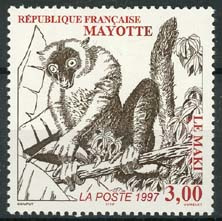 Mayotte , michel 40, xx