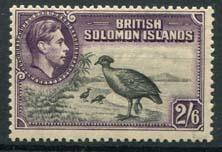 Solomon, michel 69, xx