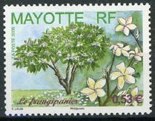 Mayotte, michel 191, xx