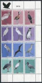 Suriname Rep., vogels 2016, xx