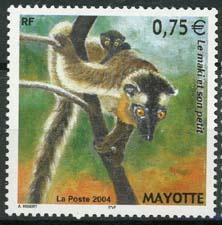Mayotte, michel 167, xx