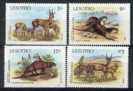 Lesotho, michel 635/38, xx