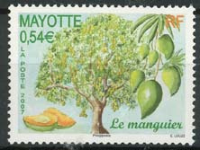 Mayotte, michel 204, xx