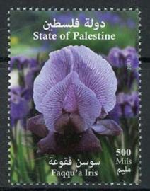 Palestina, 17/02, xx
