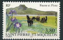 St.Pierre, michel 753, xx