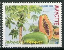 Mayotte, michel 164, xx