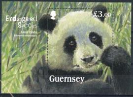 Guernsey, michel blok 62, xx