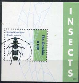 Gambia, insekten 2012, xx