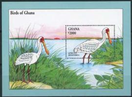 Ghana , michel blok 251, xx
