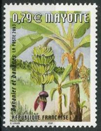 Mayotte, michel 140, xx