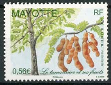 Mayotte, michel 223, xx