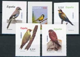 Spanje, vogels uit 2008, xx