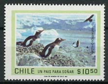 Chili, michel 950, xx