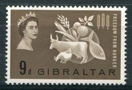 Gibraltar, michel 163, x