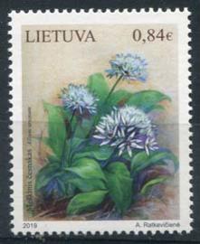 Litouen, 19/07, xx