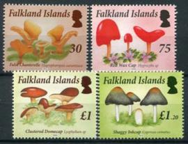 Falkland, michel 1246/49, xx