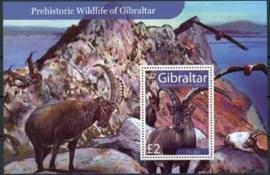 Gibraltar, michel blok 80, xx