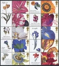 Engeland , bloemen , xx