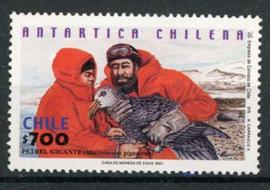 Chili, michel 2029, xx