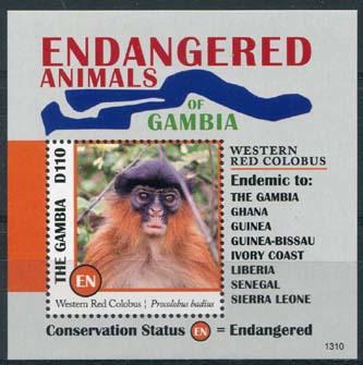 Gambia, bedreigde dieren , xx