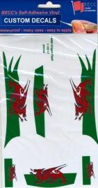 Vinylvel  *Flash Wales*  1:10 - 12