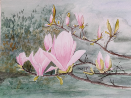 """Magnolia"" Aquarel 24 X 30 cm"
