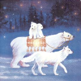 6465 Magical Winter Scenes