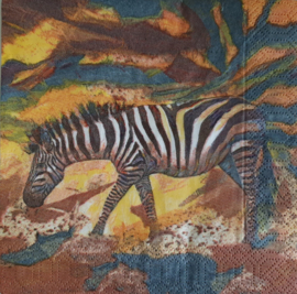 6718 Zebra