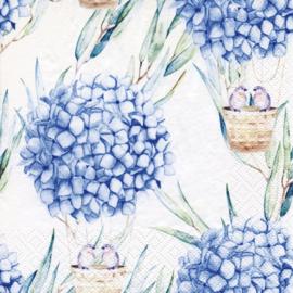 7371b Hortensia ballon blauw
