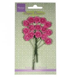 RB2246 Roosjes (helder roze)