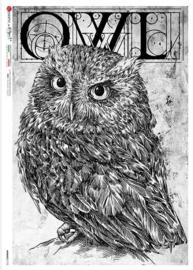 ANI-0152  Uil/Owl