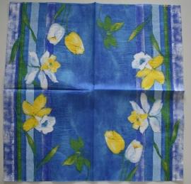2401 Narcissen met blauw