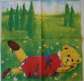 4970 Asger : beer in het gras