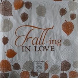 4619 RM : FALL-ing in love