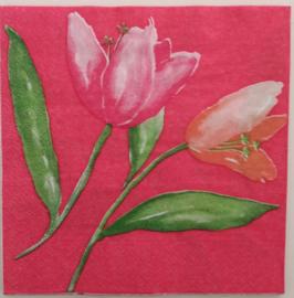 5858 Tulpen