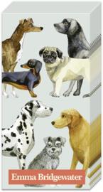 Z0591 Honden