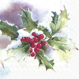 6895 Ilex, hulst en kerstster