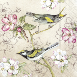 P6948 Birds Symphony cream (pakje)