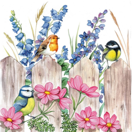 P6951 Vogels op hek (pakje)