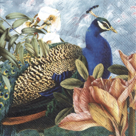 6968 Paradise peacock