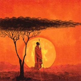 7031 African Sunset