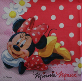 4284 Minnie Mouse