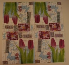 3799 Tulpen
