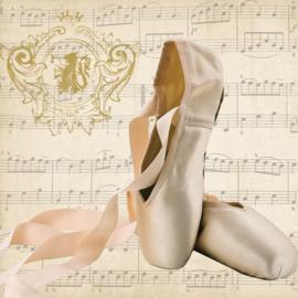 6611 Ballet schoentjes