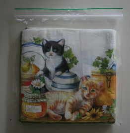 Opbergzakjes voor servetten (100 stuks)