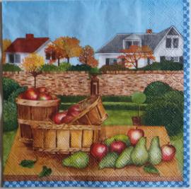 2430a Appels en peren