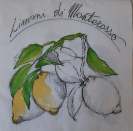 7200 Limoni di Monterosso