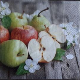 6684 Appels