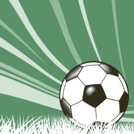 7152 Voetbal